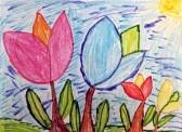 """Theme : """"Tulips"""""""